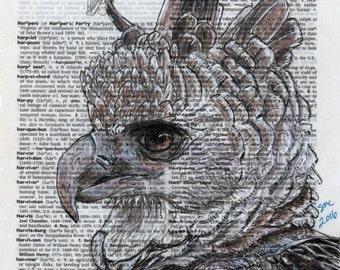 Harpy Eagle Portrait - Wildlife Animal Art Print of Original Drawing on Dictionary Paper