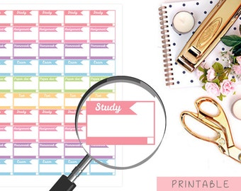 School Printable Stickers, Study Planner Stickers, Printable College Stickers,  Erin Condren Stickers, Happy Planner Stickers, Exam Stickers