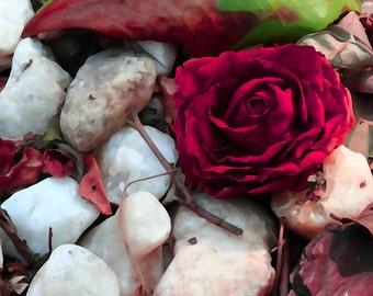 Rock n' Rose
