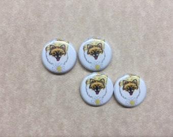 Pomeranian Buttons
