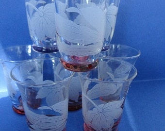 Decorative Vintage Etched Cordial Glasses With Large Flower Set of 8