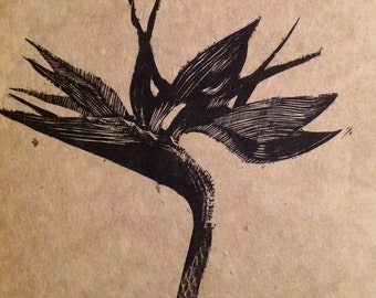 original limited edition woodcut print of birds of paradise flower