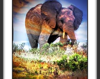 Elephant picture,Safari photo, Safari photography,Modern Picture,Animal picture, Wildlife picture, Safari art print, Color photography print