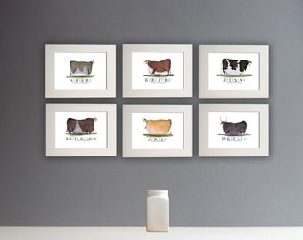 Fun Cow Prints - set of 6 unframed A4 prints