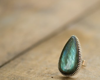 Labradorite Ring with Hidden Insect, Longhorn Beetle, Handmade from Sterling Silver
