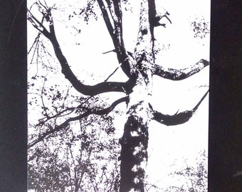 Original White and Black Ink Tree