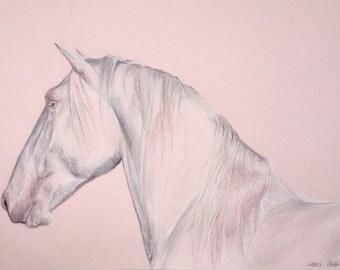 Horse A4 Original Coloured Pencil Drawing
