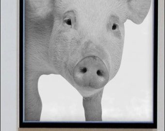 Piglet Print - Nursery Art - Home Decor - Black and White - Baby Animal
