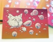 Postcard: Bubble Cat - Sunset - Hilarious Card, Weird Postcards, Art Postcards, Postcrossing, Cat Postcard, Kitten Postcard