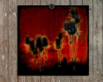 Swirly Teasel, Metallic Nature, 8 Inches By 8 Inches Photograph, TTV, Square Botanical Art Print, Earthy Home Decor, Zen - Nature Spun