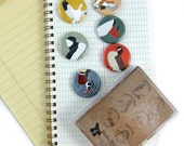 Ducks + Geese Magnets | Boxed Set of 6 | nature outdoors birder waterfowl wildlife stocking stuffer fridge magnet birdwatcher