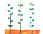 Summer Sprouts - Watercolor Art Print - 8x10 - garden, sprouts, plants, grow, green, summer