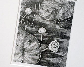 Lily Pad Dragonfly Drawing, Framed Stipple Ink Drawing, Original Art, Dragonfly Lily Pad Original Art, Framed Black and White Ink Drawing