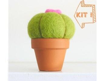 Cactus Needle Felting Kit Beginner - Needle Felted Cactus Kit - Starter Kit - Tools Needles Wool - DIY Craft Kit - DIY Home Decor