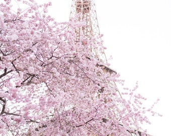 Paris Photography - Early Cherry Blossoms at the Eiffel Tower, Spring in Paris, Travel Fine Art Photograph, Large Wall Art, Gallery Wall