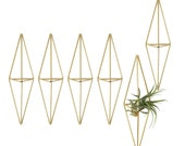 Set of 6 | ADEO | Modern Ornament | Air Plant Hanger | Himmeli