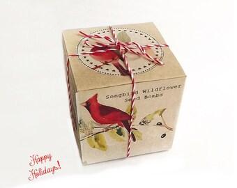 Mom Gift, Songbird Wildflower Seed Bombs, Gift Boxed, Bird lover Gift, Gardener Gift, Wildflower Seeds, Birds Butterflies