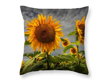 Sunflowers Blooming Throw Pillow from a Field near Rockford Michigan No.223 Fine Art decorative novelty pillow Home Décor cushion cover