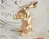 Golden Story Book Rabbit
