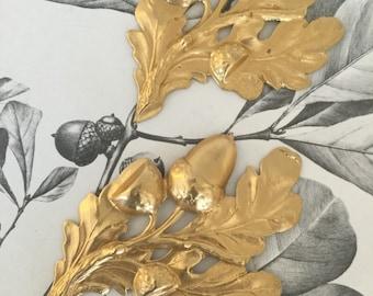 Vintage Extra Large Oak Leaf Acorns (1 pc)