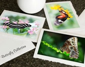 Greeting CARDS Butterfly Collection, Flowers, Wildlife or Christmas, Photo Blank Notecard Set Choose any 3 pictures in my shop Gift mom