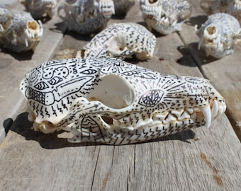 Take Courage on a Fox Skull