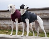 Chest Warmer / Merino for Sighthounds