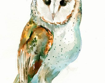 Owl, Barn Owl 14 X 11 in,  owl wall art, children owl art, illustration one of a kind watercolor owl painting