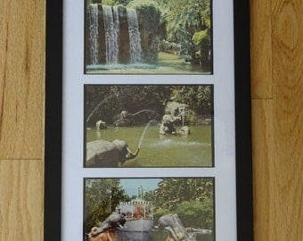 3 Vintage Framed and Matted Jungle Cruise Postcards from Disneyland Circa 1970's