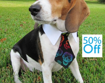 On Sale! Dog/Cat ombre sugar skull necktie/bowtie on a shirt style collar