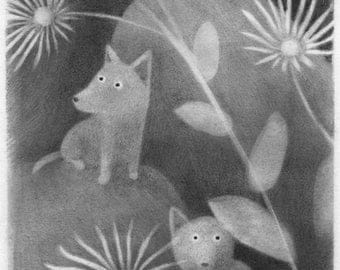 Coyotes with Elecampane