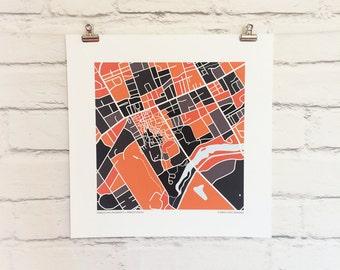 Princeton University Map Print