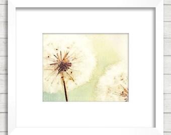 Dandelions:  Minimalist Watercolor Art Print, Boho Floral Still Life, Cottage Home Decor, Neutral Light Sage Green, Dandelion Wall Art
