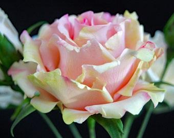 Gumpaste Garden Rose