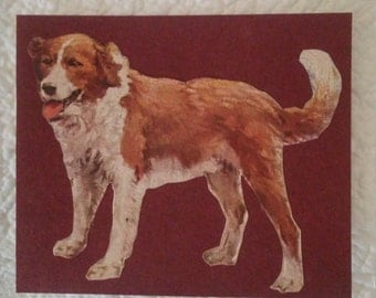 Vintage St. Bernard Dog ephemera Scrap