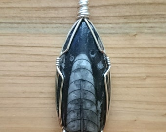 Pendant necklace, orthoceras fossil wire wrapped teardrop pendant necklace