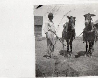 Real Photo Postcard ~ plow horses ~  RPPC ~ vintage photo