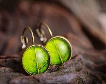 Tree leaf earrings, green dangle earrings, antique brass earrings, green earrings, glass dome earrings, antique bronze / silver plated
