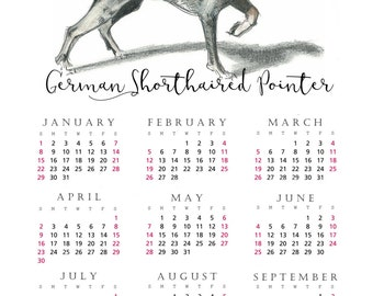 German Shorthaired Pointer 2017 yearly calendar