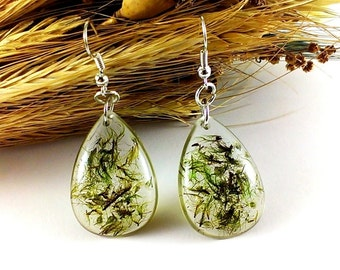 Resin earrings Holiday Gift|For|Wife Real moss earrings Mother gift daughter Natural moss green earrings Resin jewelry Dangle earrings