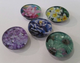 Set of 5 Strong Glass magnets, refrigerator magnets, fridge magnets, kitchen decor, Flower Magnets, flowers, floral, nature, beautiful