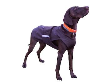 German Pointer SoftShell Dog Coat - Winter Dog Coat - Custom Dog Raincoat - SoftShell / Fleece coat + turtleneck / snood - MADE TO MEASURE