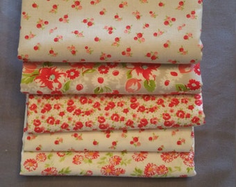 Little Ruby Half Yard Bundle of 5 in Gray and Cream by Bonnie and Camille