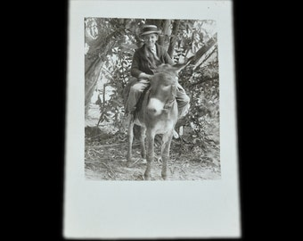 Boy on Donkey Antique RPPC - Early 1900's / Edwardian era - Excellent Vintage Condition - Original Photograph