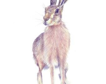 art print, wall art, wall prints, prints, woodland animal, nursery art, woodland wall art, modern nursery