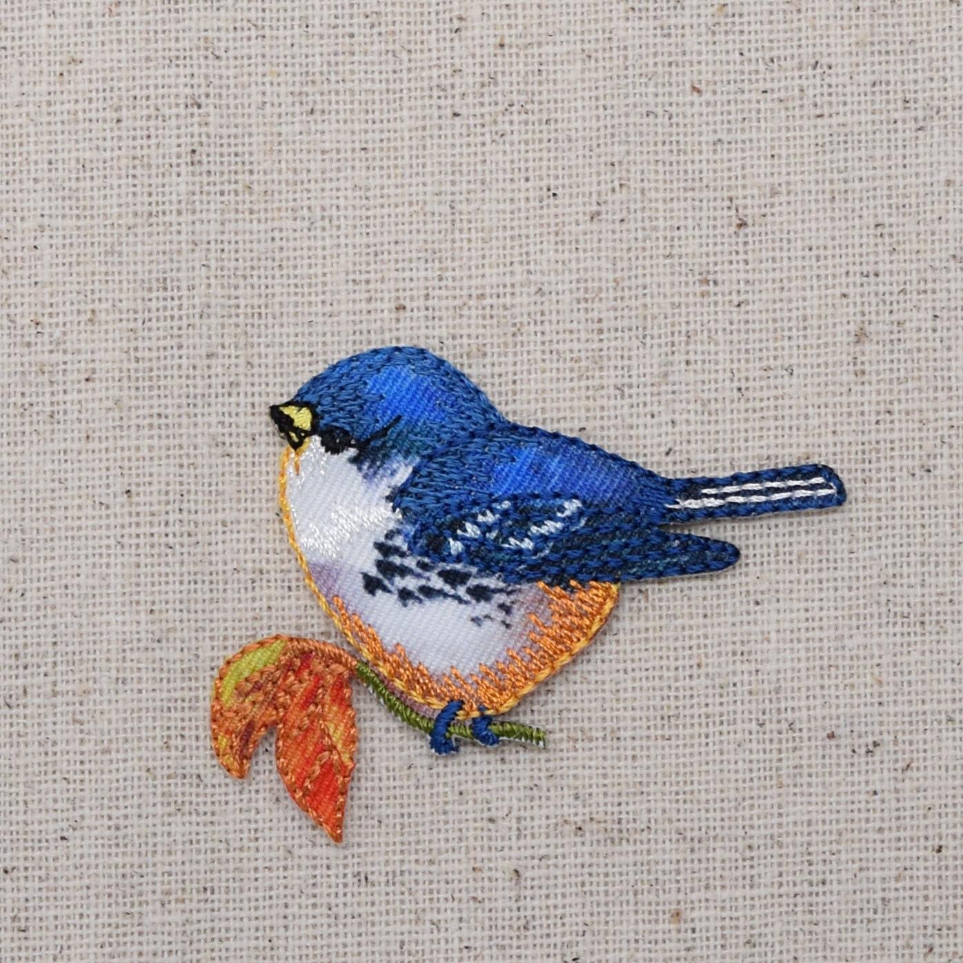 Oiseau bleu orange poitrine tenant feuille face gauche for Oiseau bleu et orange