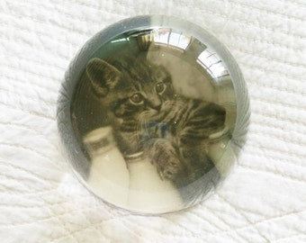 Vintage Romantic Home Heirloom White and Raven Black Kitten Paperweight with Glass Domed Top, Olives and Doves