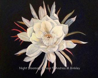 Night blooming Cereus Fine Art Print from Original Oil Painting