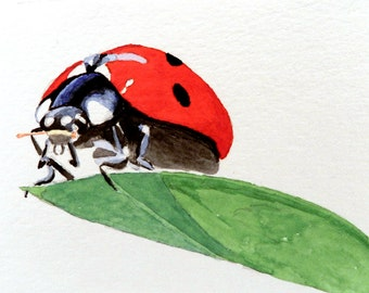 Ladybug on Leaf - 4x6 Original Watercolor Painting - Watercolor Postcard