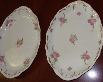 Two Shabby Chic exquisic Vintage Plates/Roses/Transferware